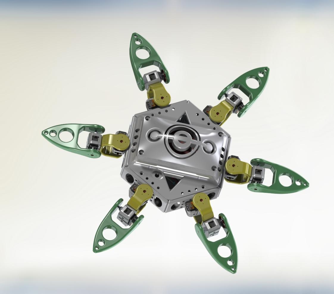 Spider - RedOhm -001