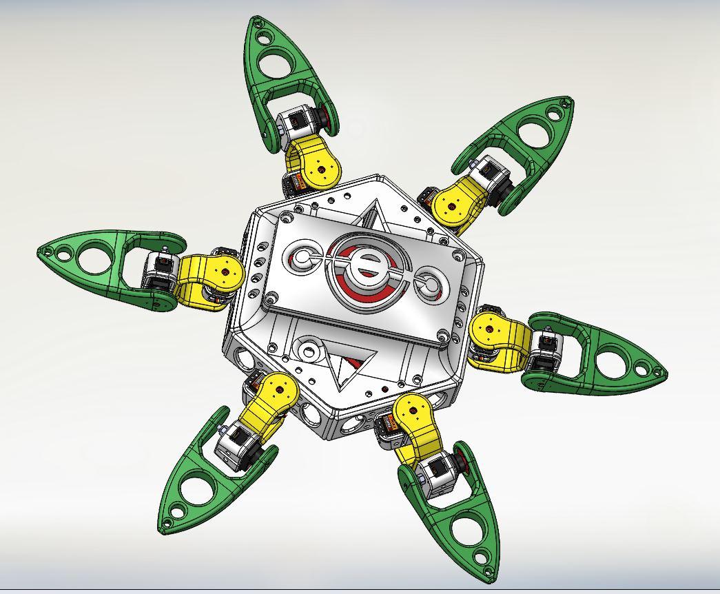 Spider - RedOhm -002