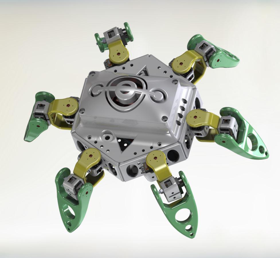 Spider - RedOhm -004
