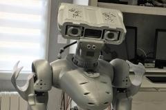 Le robot Maya