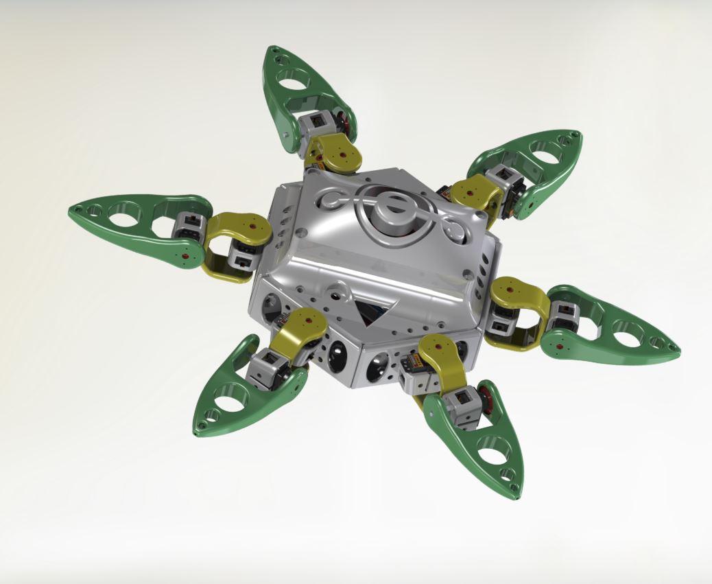 Spider - RedOhm -003