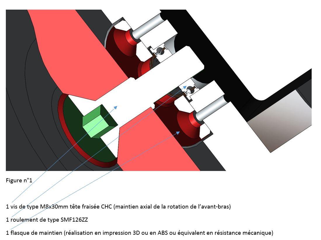 Vue du maintien axial de rotation de l'avant bras - RedOhm